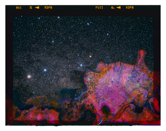 A-Photograph-of-the-Milky-Way-Eaten-by-Bacteria-Found-in-Unpasteurized-Milk_blog.jpg