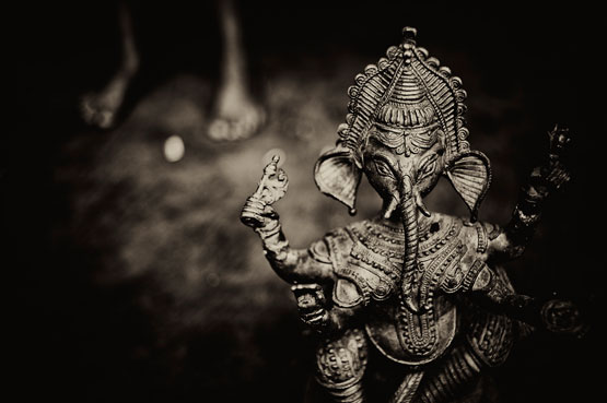 Anindya_Chakraborty_ANI5470_2.jpg