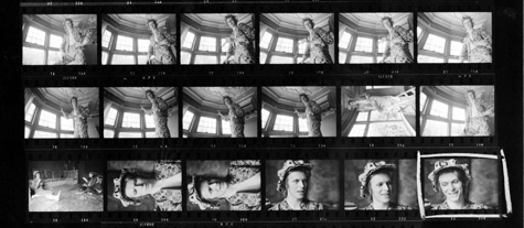 Bowie-666-1072-crop01.jpg