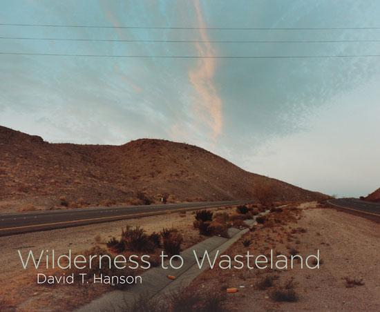 David-T.-Hanson-01.jpg