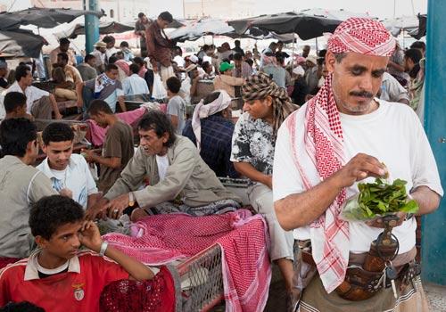 Don_Whitebread_Bajil-Qat-Market.jpg