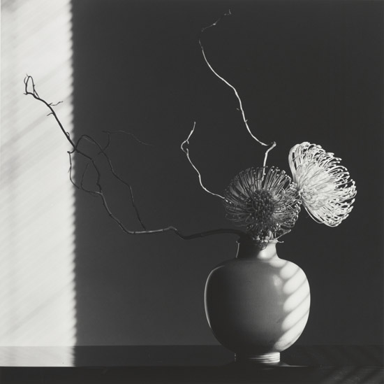 Mapplethorpe_Flower-Arrangement,-1986.jpg
