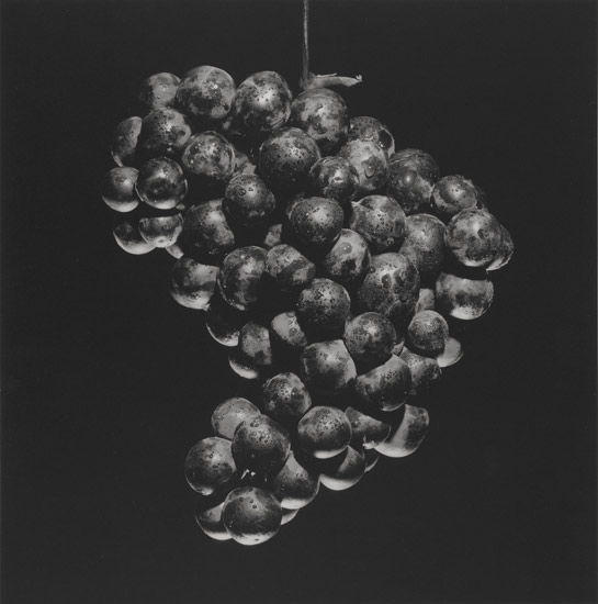 Mapplethorpe_Grapes,-1985-Gelatin-silver-print.jpg