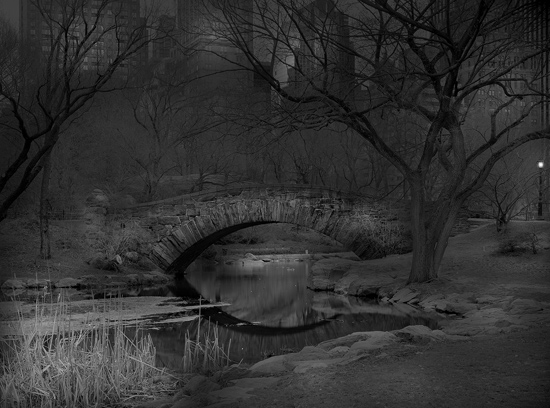 Michael_Massaia_Deep-In-A-Dream-Central-Park-2-2011.jpg