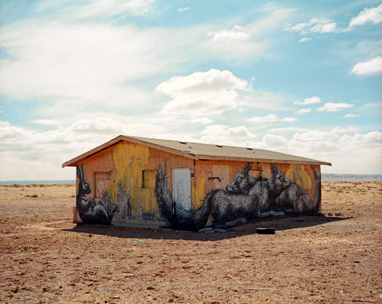Rob_Hann_critter-house.jpg