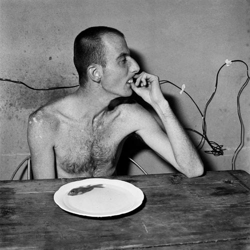 Roger_Ballen_Lunchtime.jpg