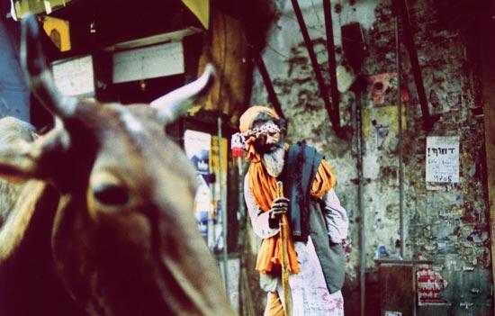 Sean_Lotman_sadhu-in-delhi.jpg
