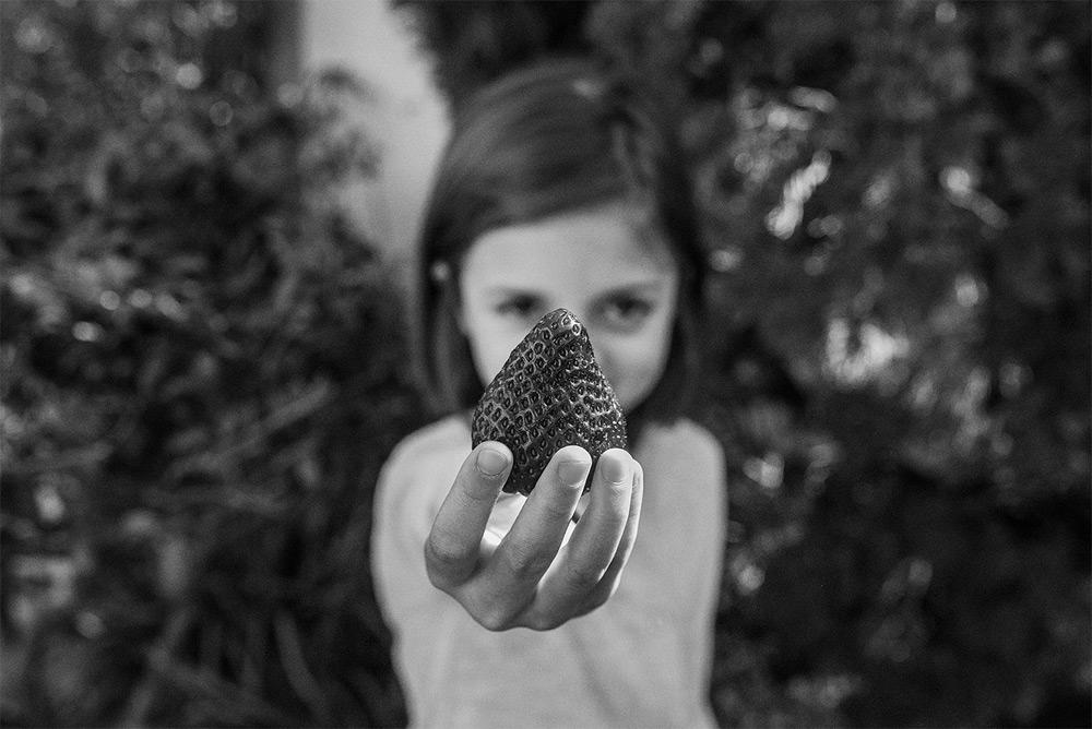 Watermelons-Sandra-Bacchi-B.jpg