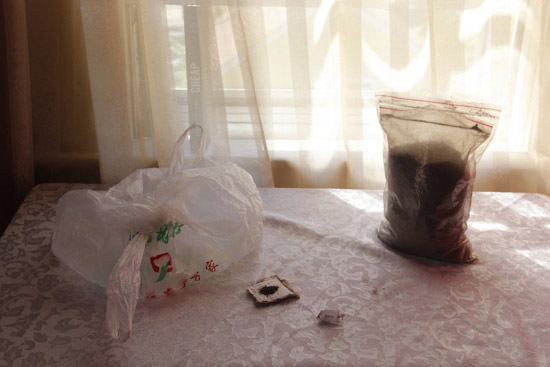 Xiang-Yun_Chen_Still-Life-with-Herb-and-Plastic-Bag.jpg