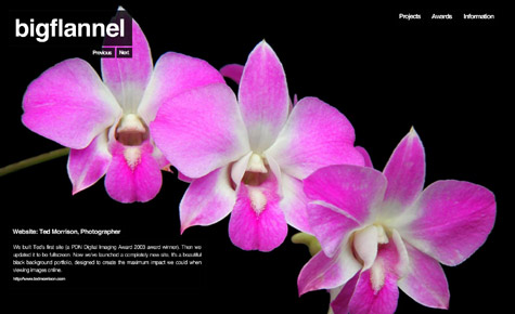 bigflannel-screen-grab.jpg