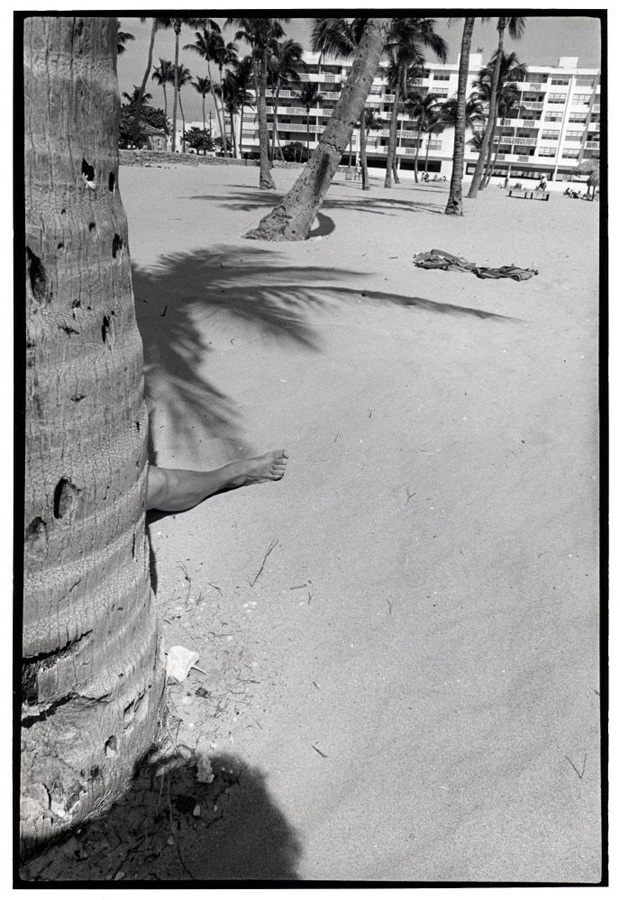 From the series: GODLIS: Miami Beach