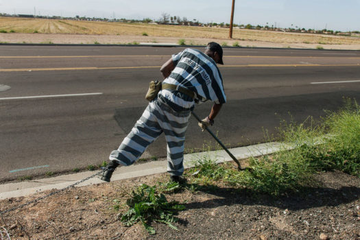 A chain gang inmate performs weeding duties in the Phoenix area.