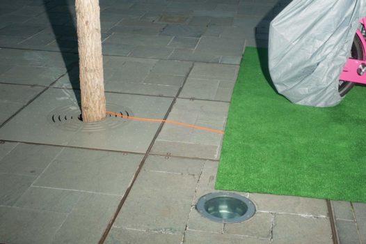 """Grass patch  06-10-12/17:57:40 51 ° 31'12.34"""" N, 0 ° 04'51.14"""" W"""