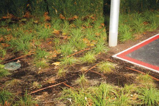 """Edge of car park  30-09-12/15:58:06 51 ° 30'12.43"""" N, 0 ° 01'23.85"""" W"""