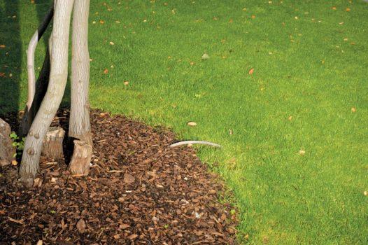 "Tree plot  06-10-12/17:09:29 51 ° 31'11.05"" N, 0 ° 04'39.96"" W"