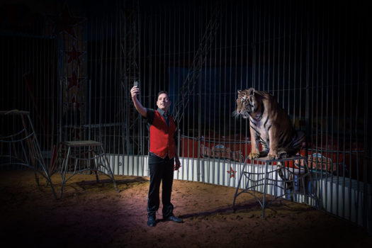 Storyteller Francisco Salgueiro captures both the backstage banality and the front-of-house excitement at circuses across Portugal.