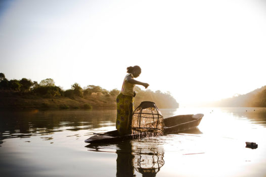 A migrant worker from Mali pulls up the fishing pots from River Gambia, near the Gambian village of Fatoto.