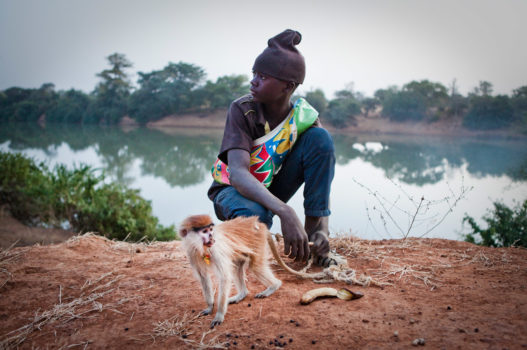 Musa Djallow with his pet red monkey. The mother had been hunted and killed for bush meat and Musa rescued the orphaned baby.