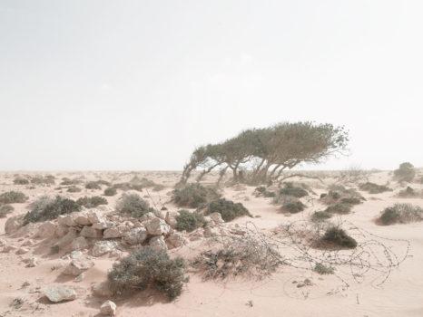 Defensive postion, in an encroaching sandstorm. Alem Hamza Battlefield, Libya