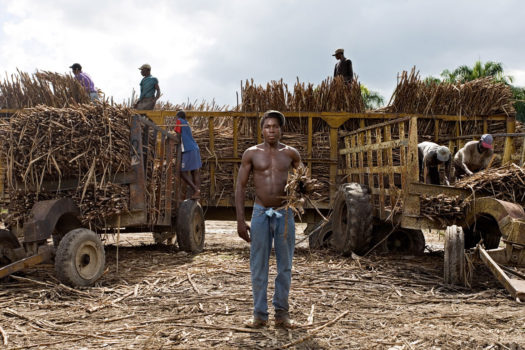 """Yoni moved from Haiti to Las Pajas four years ago. Yoni's cousin helped get him declared a citizen two years later. If someone asks him if he is Haitian or Dominican, Yoni responds, """"Soy legal"""" (I'm legal). He cuts sugar cane, earning about 300 pesos every two days."""