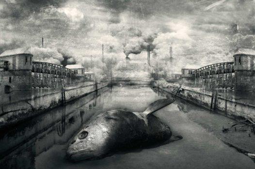 Marcin Owczarek: Man is imperfect  Dead Cities, 2010