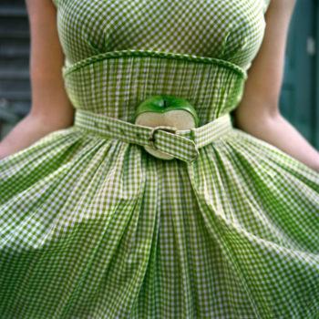 The Cut Apple and Gingham Dress, Self Portrait Clark's Island, Maine, 2003