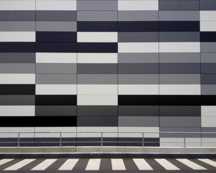 Zebra, by Diana Sokolic (Croatia)