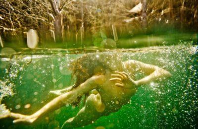 Neil Craver: Omni-Phantasmic © Neil Craver