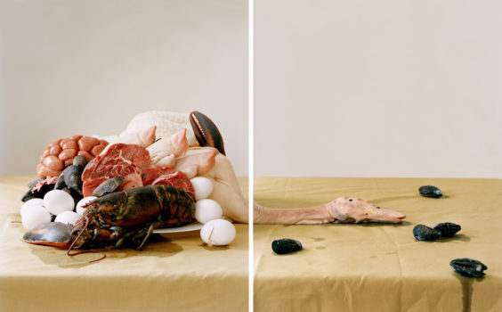 Untitled No. 3 (from the series 'Lessons of Impermanence'), 2009