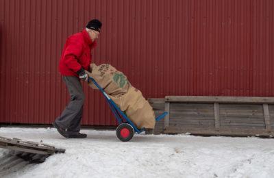 Elin Sæterbø: Operation Firewood © Elin Sæterbø