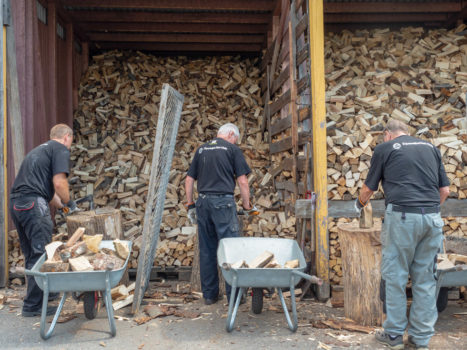 From the series: Elin Sæterbø: Operation Firewood
