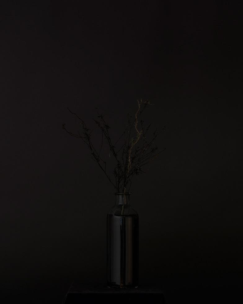 From the series: Sunjoo Lee: Black Memorabilia