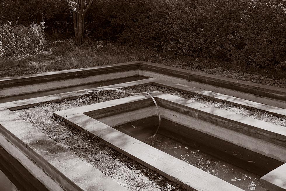 A decorative pool