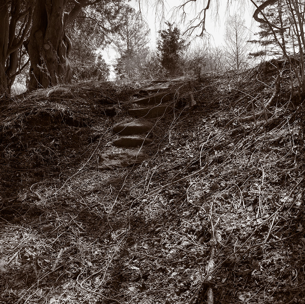 A ruined stairway